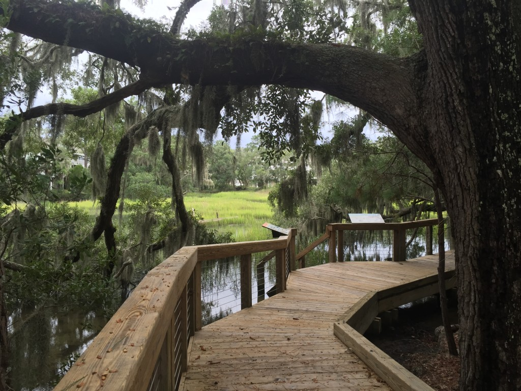Fiddler Crab Cove is the most scenic of the boardwalks (in my humble opinion), and a fantastic place for your family photos.